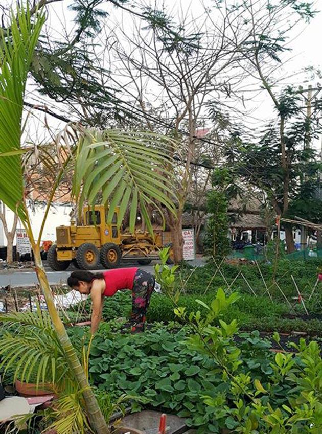 Tham quan sân vườn mát mắt bên trong biệt thự của Hồ Ngọc Hà 11