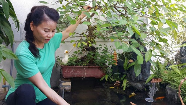 Tham quan sân vườn mát mắt bên trong biệt thự của Hồ Ngọc Hà 6