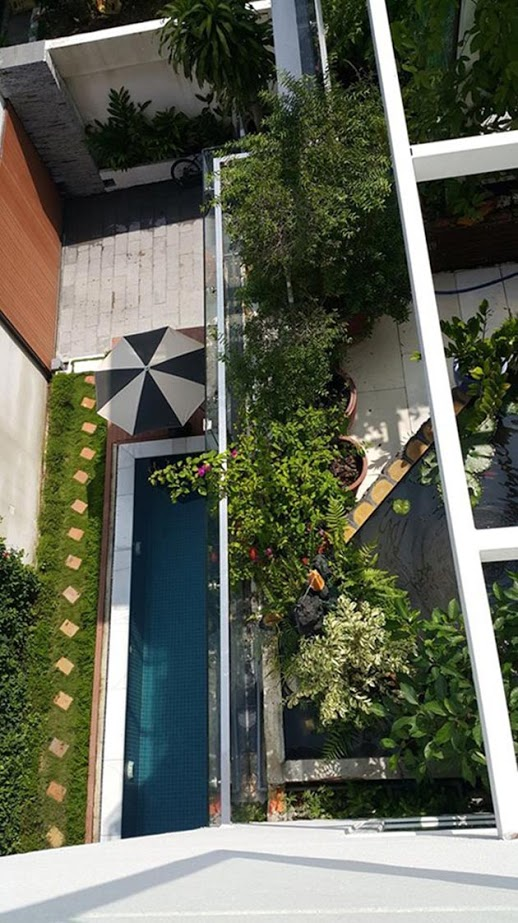 Tham quan sân vườn mát mắt bên trong biệt thự của Hồ Ngọc Hà 8