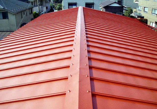 Các kiểu mái nhà đẹp, hiện đại phổ biến nhất hiện nay tại Việt Nam 6