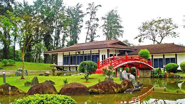 thiết kế nhà vườn theo phong cách trung quốc