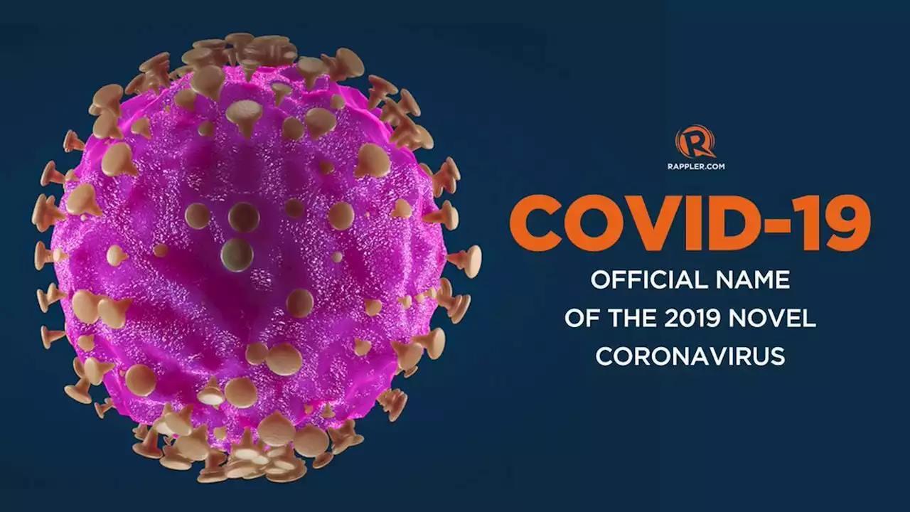 Corona 2019 3